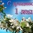 Режим работы и отдыха на майские праздники 2013 г. в ДИТИ НИЯУ МИФИ